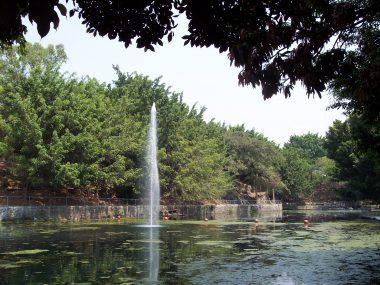 Parque Barranca de Chapultepec