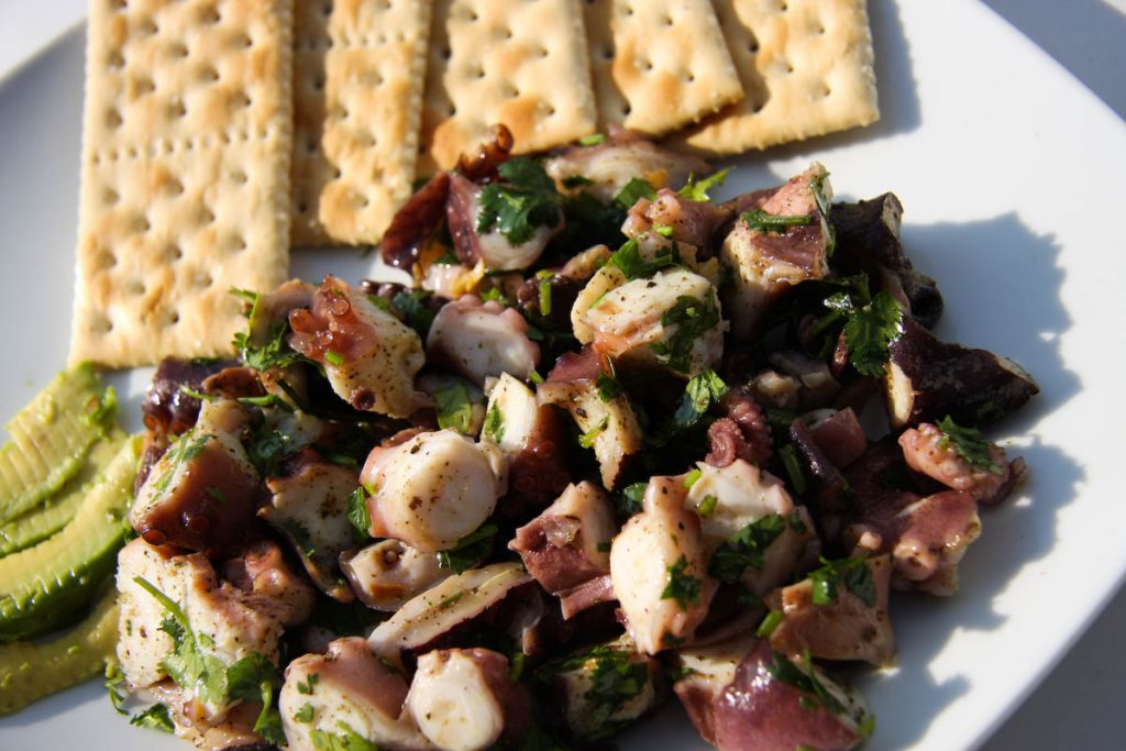 Gastronomía de Tequesquitengo